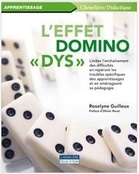 """couverture du livre """"L'effet domino DYS"""""""